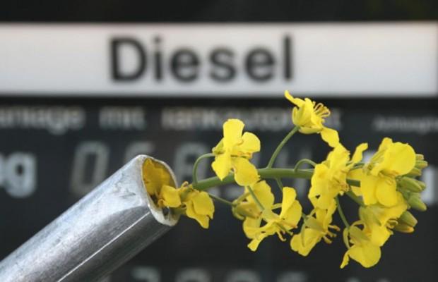 Biodiesel aus Europa ist nachhaltig produzierbar