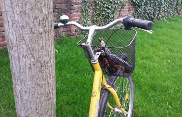 Ratgeber: Promillegrenzen für motorisierte Zweiräder - Unter Strom nicht auf den Stromer